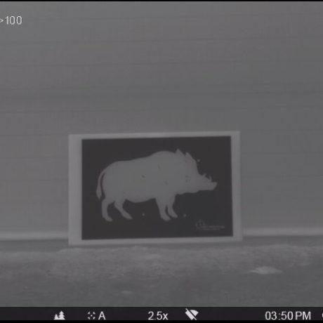 Boar target (thermal 1) – passive