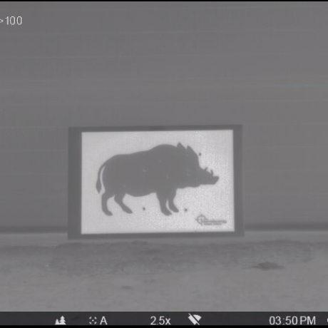 Boar target (thermal 2) – passive